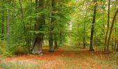 Trail Walk SAINT-JEAN-AUX-BOIS - en forêt de Compiègne_22_la Muette_le Mont Arcy_le Fort Poirier - Photo 78