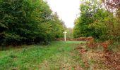 Trail Walk SAINT-JEAN-AUX-BOIS - en forêt de Compiègne_22_la Muette_le Mont Arcy_le Fort Poirier - Photo 86