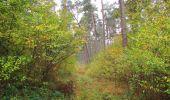 Trail Walk SAINT-JEAN-AUX-BOIS - en forêt de Compiègne_22_la Muette_le Mont Arcy_le Fort Poirier - Photo 138