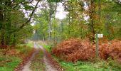 Trail Walk SAINT-JEAN-AUX-BOIS - en forêt de Compiègne_22_la Muette_le Mont Arcy_le Fort Poirier - Photo 101