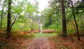 Trail Walk SAINT-JEAN-AUX-BOIS - en forêt de Compiègne_22_la Muette_le Mont Arcy_le Fort Poirier - Photo 126