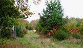 Trail Walk SAINT-JEAN-AUX-BOIS - en forêt de Compiègne_22_la Muette_le Mont Arcy_le Fort Poirier - Photo 84