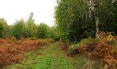 Trail Walk SAINT-JEAN-AUX-BOIS - en forêt de Compiègne_22_la Muette_le Mont Arcy_le Fort Poirier - Photo 37