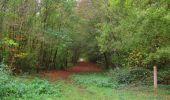 Trail Walk SAINT-JEAN-AUX-BOIS - en forêt de Compiègne_22_la Muette_le Mont Arcy_le Fort Poirier - Photo 158
