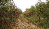 Trail Walk SAINT-JEAN-AUX-BOIS - en forêt de Compiègne_22_la Muette_le Mont Arcy_le Fort Poirier - Photo 154