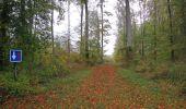 Trail Walk SAINT-JEAN-AUX-BOIS - en forêt de Compiègne_22_la Muette_le Mont Arcy_le Fort Poirier - Photo 163