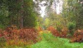 Trail Walk SAINT-JEAN-AUX-BOIS - en forêt de Compiègne_22_la Muette_le Mont Arcy_le Fort Poirier - Photo 131