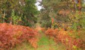 Trail Walk SAINT-JEAN-AUX-BOIS - en forêt de Compiègne_22_la Muette_le Mont Arcy_le Fort Poirier - Photo 130