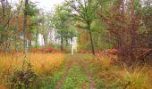 Trail Walk SAINT-JEAN-AUX-BOIS - en forêt de Compiègne_22_la Muette_le Mont Arcy_le Fort Poirier - Photo 135