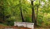 Trail Walk SAINT-JEAN-AUX-BOIS - en forêt de Compiègne_22_la Muette_le Mont Arcy_le Fort Poirier - Photo 46