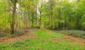Trail Walk SAINT-JEAN-AUX-BOIS - en forêt de Compiègne_22_la Muette_le Mont Arcy_le Fort Poirier - Photo 55