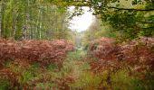 Trail Walk SAINT-JEAN-AUX-BOIS - en forêt de Compiègne_22_la Muette_le Mont Arcy_le Fort Poirier - Photo 90