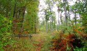 Trail Walk SAINT-JEAN-AUX-BOIS - en forêt de Compiègne_22_la Muette_le Mont Arcy_le Fort Poirier - Photo 95