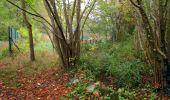 Trail Walk SAINT-JEAN-AUX-BOIS - en forêt de Compiègne_22_la Muette_le Mont Arcy_le Fort Poirier - Photo 160
