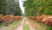 Trail Walk SAINT-JEAN-AUX-BOIS - en forêt de Compiègne_22_la Muette_le Mont Arcy_le Fort Poirier - Photo 91