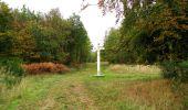 Trail Walk SAINT-JEAN-AUX-BOIS - en forêt de Compiègne_22_la Muette_le Mont Arcy_le Fort Poirier - Photo 85