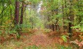 Trail Walk SAINT-JEAN-AUX-BOIS - en forêt de Compiègne_22_la Muette_le Mont Arcy_le Fort Poirier - Photo 127