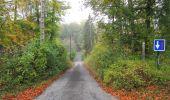 Trail Walk SAINT-JEAN-AUX-BOIS - en forêt de Compiègne_22_la Muette_le Mont Arcy_le Fort Poirier - Photo 164