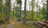 Trail Walk SAINT-JEAN-AUX-BOIS - en forêt de Compiègne_22_la Muette_le Mont Arcy_le Fort Poirier - Photo 39