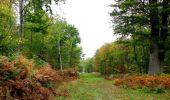 Trail Walk SAINT-JEAN-AUX-BOIS - en forêt de Compiègne_22_la Muette_le Mont Arcy_le Fort Poirier - Photo 88