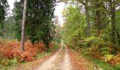 Trail Walk SAINT-JEAN-AUX-BOIS - en forêt de Compiègne_22_la Muette_le Mont Arcy_le Fort Poirier - Photo 93