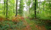 Trail Walk SAINT-JEAN-AUX-BOIS - en forêt de Compiègne_22_la Muette_le Mont Arcy_le Fort Poirier - Photo 107