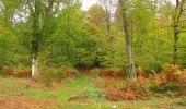 Trail Walk SAINT-JEAN-AUX-BOIS - en forêt de Compiègne_22_la Muette_le Mont Arcy_le Fort Poirier - Photo 72