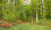 Trail Walk SAINT-JEAN-AUX-BOIS - en forêt de Compiègne_22_la Muette_le Mont Arcy_le Fort Poirier - Photo 77