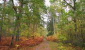 Trail Walk SAINT-JEAN-AUX-BOIS - en forêt de Compiègne_22_la Muette_le Mont Arcy_le Fort Poirier - Photo 145