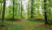 Trail Walk SAINT-JEAN-AUX-BOIS - en forêt de Compiègne_22_la Muette_le Mont Arcy_le Fort Poirier - Photo 106