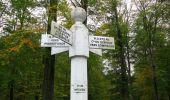 Trail Walk SAINT-JEAN-AUX-BOIS - en forêt de Compiègne_22_la Muette_le Mont Arcy_le Fort Poirier - Photo 98