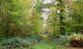 Trail Walk SAINT-JEAN-AUX-BOIS - en forêt de Compiègne_22_la Muette_le Mont Arcy_le Fort Poirier - Photo 114