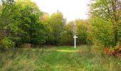 Trail Walk SAINT-JEAN-AUX-BOIS - en forêt de Compiègne_22_la Muette_le Mont Arcy_le Fort Poirier - Photo 51