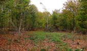 Trail Walk SAINT-JEAN-AUX-BOIS - en forêt de Compiègne_22_la Muette_le Mont Arcy_le Fort Poirier - Photo 28