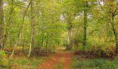 Trail Walk SAINT-JEAN-AUX-BOIS - en forêt de Compiègne_22_la Muette_le Mont Arcy_le Fort Poirier - Photo 54