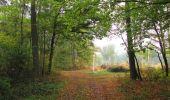 Trail Walk SAINT-JEAN-AUX-BOIS - en forêt de Compiègne_22_la Muette_le Mont Arcy_le Fort Poirier - Photo 143