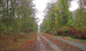 Trail Walk SAINT-JEAN-AUX-BOIS - en forêt de Compiègne_22_la Muette_le Mont Arcy_le Fort Poirier - Photo 151