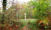 Trail Walk SAINT-JEAN-AUX-BOIS - en forêt de Compiègne_22_la Muette_le Mont Arcy_le Fort Poirier - Photo 94