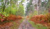 Trail Walk SAINT-JEAN-AUX-BOIS - en forêt de Compiègne_22_la Muette_le Mont Arcy_le Fort Poirier - Photo 119
