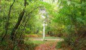 Trail Walk SAINT-JEAN-AUX-BOIS - en forêt de Compiègne_22_la Muette_le Mont Arcy_le Fort Poirier - Photo 123