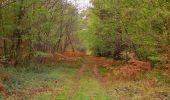Trail Walk SAINT-JEAN-AUX-BOIS - en forêt de Compiègne_22_la Muette_le Mont Arcy_le Fort Poirier - Photo 57