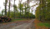 Trail Walk SAINT-JEAN-AUX-BOIS - en forêt de Compiègne_22_la Muette_le Mont Arcy_le Fort Poirier - Photo 40