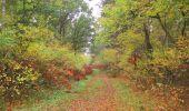 Trail Walk SAINT-JEAN-AUX-BOIS - en forêt de Compiègne_22_la Muette_le Mont Arcy_le Fort Poirier - Photo 149