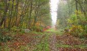 Trail Walk SAINT-JEAN-AUX-BOIS - en forêt de Compiègne_22_la Muette_le Mont Arcy_le Fort Poirier - Photo 133