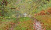 Trail Walk SAINT-JEAN-AUX-BOIS - en forêt de Compiègne_22_la Muette_le Mont Arcy_le Fort Poirier - Photo 146
