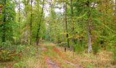 Trail Walk SAINT-JEAN-AUX-BOIS - en forêt de Compiègne_22_la Muette_le Mont Arcy_le Fort Poirier - Photo 104