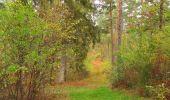 Trail Walk SAINT-JEAN-AUX-BOIS - en forêt de Compiègne_22_la Muette_le Mont Arcy_le Fort Poirier - Photo 63