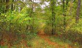Trail Walk SAINT-JEAN-AUX-BOIS - en forêt de Compiègne_22_la Muette_le Mont Arcy_le Fort Poirier - Photo 62