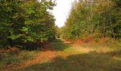 Trail Walk SAINT-JEAN-AUX-BOIS - en forêt de Compiègne_22_la Muette_le Mont Arcy_le Fort Poirier - Photo 50