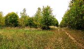 Trail Walk SAINT-JEAN-AUX-BOIS - en forêt de Compiègne_22_la Muette_le Mont Arcy_le Fort Poirier - Photo 32